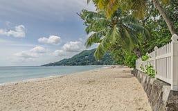 Groene palmen en een witte omheining bij het strand en de groene heuvel Royalty-vrije Stock Afbeeldingen