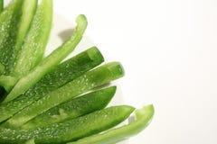 Groene paprika Royalty-vrije Stock Afbeeldingen