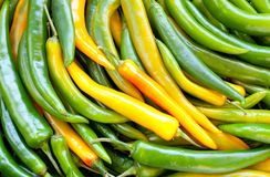 Groene paprika Chili Royalty-vrije Stock Afbeeldingen