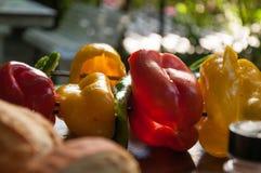 Groene paprika, courgette en verse groentenvleespen royalty-vrije stock foto's