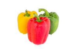 Groene paprika drie kleuren Stock Fotografie