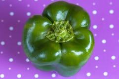 Groene paprika groen op een purpere stipoppervlakte Royalty-vrije Stock Afbeeldingen