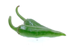 Groene paprika op een wit stock afbeeldingen