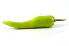Groene paprika of Paprika Stock Afbeelding