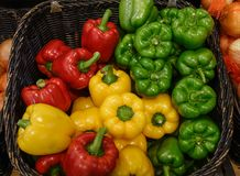 Groene paprika of peperpaprika stock foto