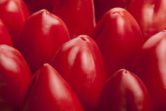 Groene paprika rode tegel Stock Afbeeldingen