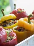 Groene paprika's die met Gekruide Rijst worden gevuld royalty-vrije stock foto's