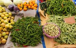 Groene paprika's en bonen Stock Fotografie