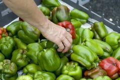 Groene paprika's met rood Stock Afbeeldingen