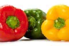 Groene paprika's met waterdruppeltjes Stock Foto's