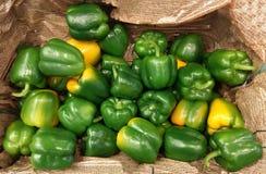 Groene paprika's voor verkoop Stock Fotografie