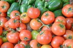 Groene paprika, Tomaat Stock Foto