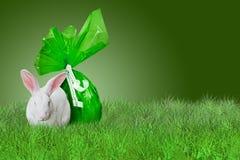 Groene Pasen op gras Stock Fotografie
