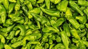 Groene peperspaanse peper Achtergrondvoedsel Royalty-vrije Stock Afbeelding