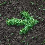 Groene pijl Stock Foto's