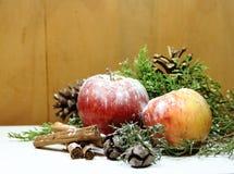 Groene pijnbomen en het gedroogd fruit Kerstmis van achtergrond de rode appelen gouden ananassen Stock Foto's