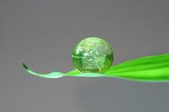 Groene planeet op blad Royalty-vrije Stock Fotografie