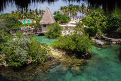 Groene Pool in Xcaret Mexico Stock Foto