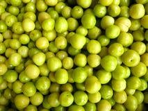 Groene pruimen Royalty-vrije Stock Afbeeldingen