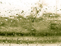 Groene regendruppelsdetails in wintertijd Royalty-vrije Stock Foto's