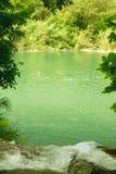 Groene rivier Royalty-vrije Stock Foto