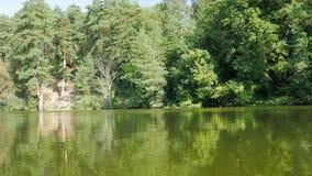 Groene rivierbank stock footage