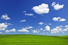 Groene rollende heuvels onder blauwe hemel Stock Fotografie