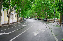 Groene Roman straat Royalty-vrije Stock Fotografie