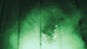 Groene rook, ijzergrill wapen stock footage