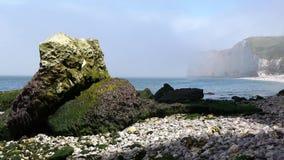 Groene rotsen op de overzeese kust stock videobeelden
