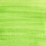 Groene ruwe grungetextuur - waterverfachtergrond Stock Fotografie