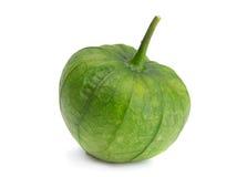Groene ruwe physalis Stock Foto