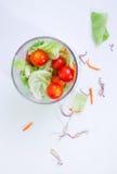 Groene salade _1 stock afbeeldingen