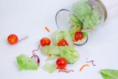 Groene salade _1 stock fotografie