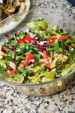 Groene salade Royalty-vrije Stock Foto's