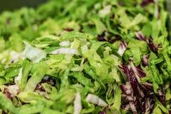 Groene salade, gesneden, gewassen, en gediende bijl, vers Gastronomische Chef-kok stock afbeelding