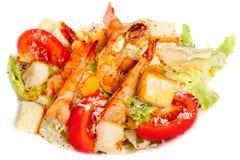 Groene salade met garnalen Stock Fotografie