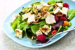 Groene salade met geroosterde kip Royalty-vrije Stock Afbeelding