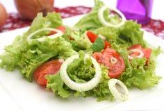 Groene salade met tomaten Royalty-vrije Stock Foto's