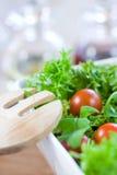 Groene salade met tomaten Stock Foto
