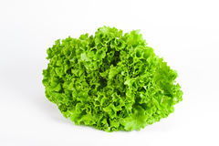 Groene salade op een witte geïsoleerde achtergrond, Royalty-vrije Stock Afbeeldingen