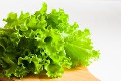 Groene saladesla Stock Afbeeldingen