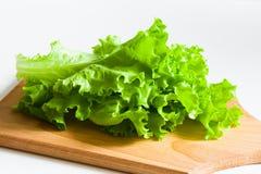 Groene saladesla Stock Foto's