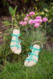 Groene sandals liggen op het gras, dames comfortabele schoenen stock afbeeldingen