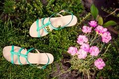 Groene sandals liggen op het gras, dames comfortabele schoenen stock foto