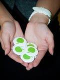 2012 groene Scholentop Royalty-vrije Stock Foto