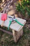 Groene schop en rode snoeischaar op kruk in de lentetuin Stock Foto's