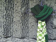 Groene sjaal Stock Foto's