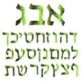 Groene sjofele Hebreeuwse doopvont Alfabet De brieven Joodse taal stock illustratie