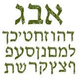 Groene sjofele Hebreeuwse doopvont Alfabet De brieven Joodse taal vector illustratie
